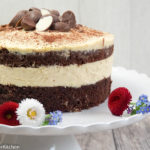Schokoladenkuchen mit Mango Füllung