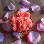 Orangen-Schokoladen Cupcakes mit Cranberrie-Buttercreme